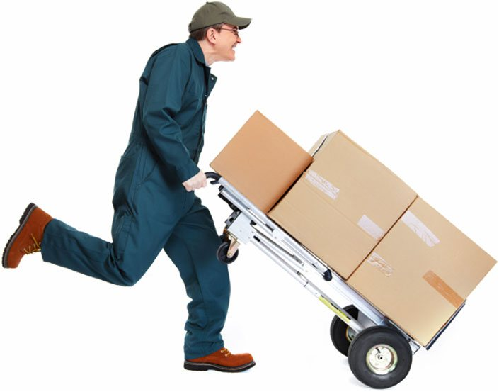 professional movers san jose